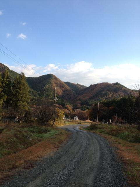 20111124-121415.jpg
